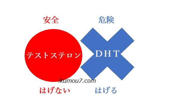 テストステロンとDHTの関係