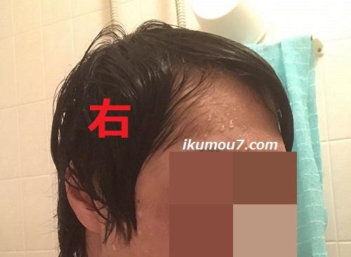 濡れたM字の右側(左に髪を集める)